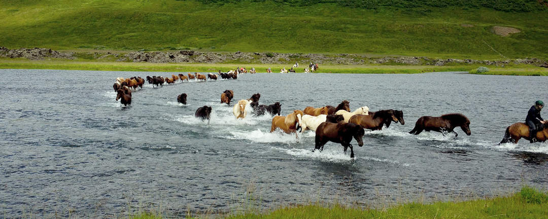 Rider över flod på väg till halvön Melrakkaslétta