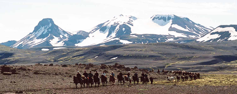 Magisk ridning med spektakulära vyer på Island
