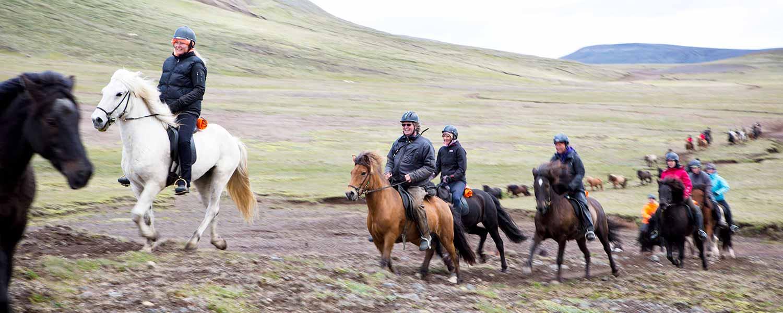 Glada skrattande ryttare på islandshästar