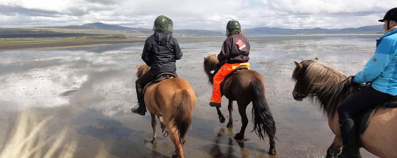 Rider genom grunt vatten genom deltat och över i gräsklädda sandbanker på Island