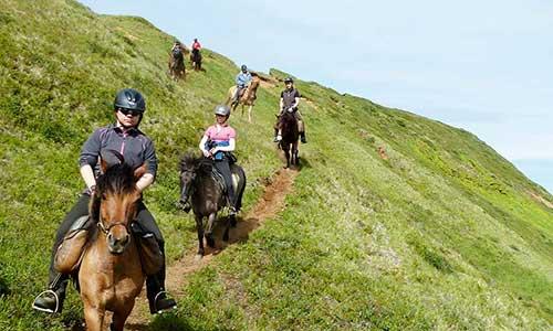 Rider islandhäst efter bergssluttning med Riding Iceland