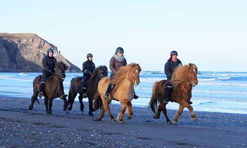 Rider tölt på stranden med Riding Iceland på islandshästar