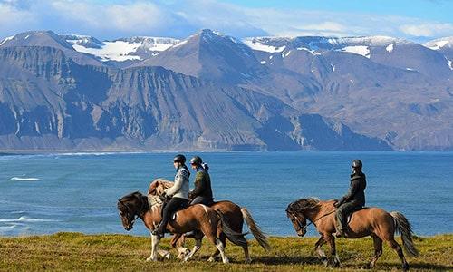 Saltvik ridresa med Riding Iceland på norra Island med kort flerdagstur
